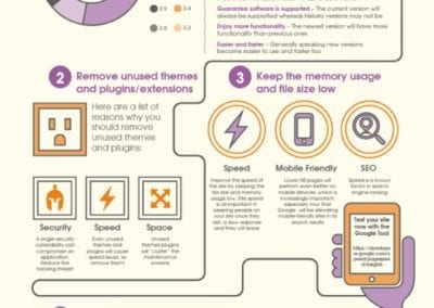 How to optimise your CMS or ecommerce system infographic by Opace