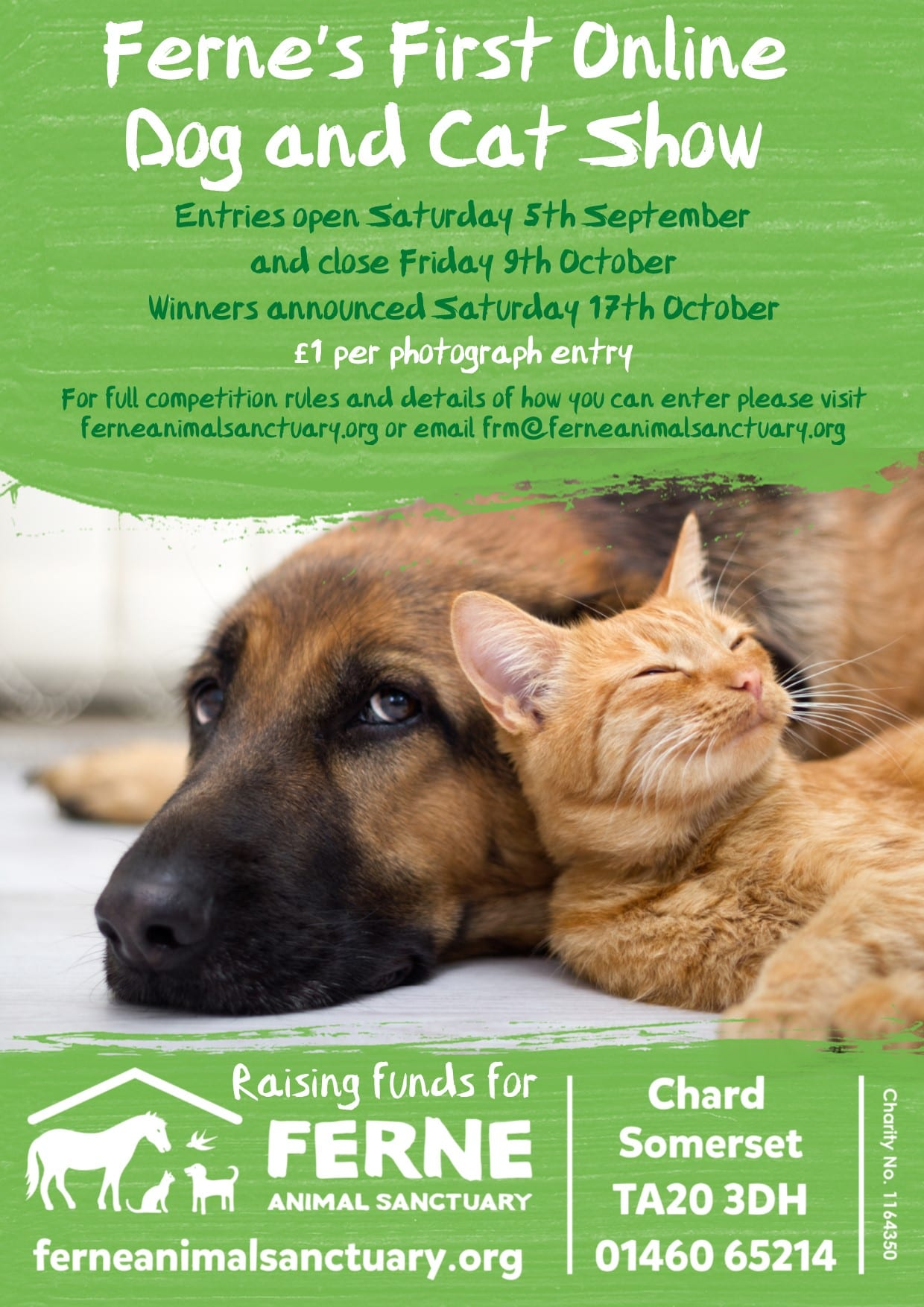 Ferne's First Online Dog and Cat Show