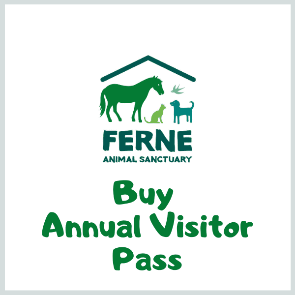 Annual Visitor Passes